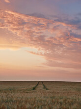 Colourful Sunset Clouds Over Farmland