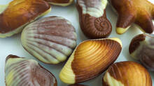 Chocolate Candy Seashells Chocolate Background