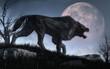 canvas print picture - A demonic creature with big claws and teeth stalks through long grass soon after nightfall as the moon rises. This black dog shaped beast is a Barghest, a hell hound of English folklore. 3D Rendering.