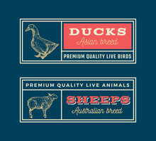 Meat And Poultry Retro Framed Badges Or Logo Templates Set. Hand Drawn Duck And Sheep Sketches With Retro Typography. Vintage Sketch Emblems Set. Isolated