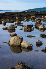 Tide Pool At Moose Point In Searsport Maine
