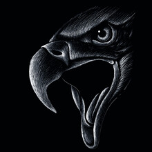 The Vector Logo Eagle For Tattoo Or T-shirt Design Or Outwear.  Hunting Style Raven Background. This Hand Drawing Is For Black Fabric Or Canvas.