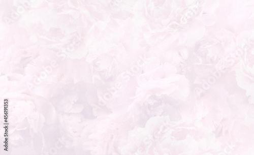Tekstura, jasno różowe piwonie. Ozdobny papier, zaproszenia, wizytówki, druk na tkaninę, tło.