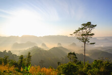 Doi Ta Pang (khao Thalu) Chumphon,  Tropical Nature In Thailand