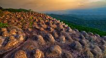 Sunset At Lan Hin Pum Under Colorful Sky At Phu Hin Rong Kla National Park, Phitsanulok, Thailand
