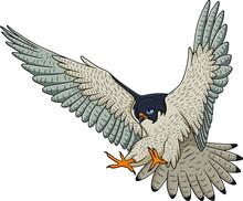 Falcon Flying Cartoon Vector Illustration