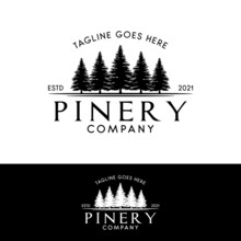 Pine Or Fir Forest Logo, Evergreen Pinery Logo