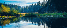 Reflection Of A Scenic Lake In Vancouver, Canda