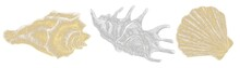 Decorative Elements On A Marine Theme, Hatched Illustrations Of Gold And Silver Shells On A White Background