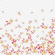 Pink Foliage Background Transparent Vector. Leaf Forest Frame. Yellow Herb Abstract. Decorative Illustration. Leaves Cartoon.