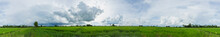 Clouds Over Green Rice Fields