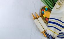 Jewish Holiday Sukkot Traditional Symbols Four Species Etrog Lulav Hadas Arava