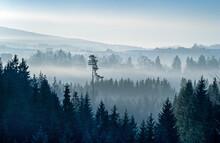 Slopes Of The Silesian Beskids In Morning Fog, Poland