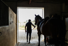 Man Taking Horse Out Of Stall In Riding School