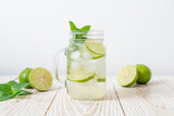 iced lime soda with mint