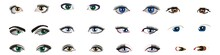 Woman Eyes Collection, Vector Illustration. Various Types Of Woman Eyes, Vector Set. Female Woman Eyes And Brows Image Collection Set. Fashion Girl Eyes Design. Vector Illustration
