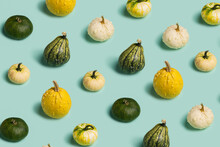 Pattern Of Fresh And Juicy Autumn Gourds And Pumpkins On Pastel Green Background. Creative Halloween Or Thanksgiving Day Concept. Minimal Fall Season Wallpaper Texture. Flat Lay.