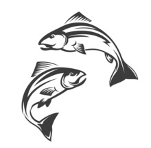 Salmon Fish Vector Icon Of Leaping Coho, Chinook, Atlantic And Pink Salmon. Isolated Sea And Ocean Seafood Animals Monochrome Symbol Of Seafood Restaurant, Fishing Sport Or Fish Market Design