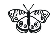 Hand Drawn Illustration. Creative Ink Art Work. Actual Vector Drawing Spring Butterfly