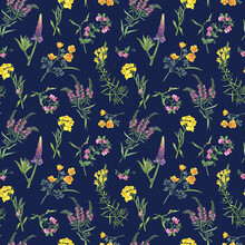 Seamless Floral Pattern With Yellow Linaria Vulgaris, Cheiranthus Cheiri, Eschscholzia, Pink Mouse Peas, Lupin, Ivan Chai Flowers. Watercolor Painting Illustration Isolated On Blue Background