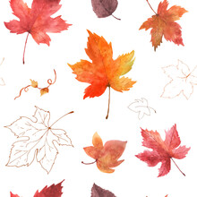 Watercolor Seamless Pattern Autumn Maple Leaves On A White Background