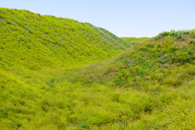 Ravine And Hills Covered With Green Grass On A Summer Day