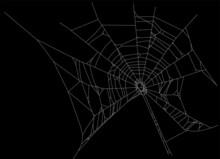 White Isolated Old Spider Web Illustration