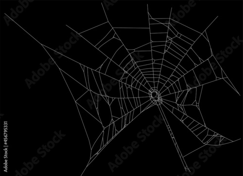 Canvas Print white isolated old spider web illustration