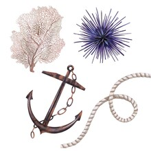 Watercolor Anchor, Coral, Seagrass And Rope With Knot. Marine Theme. Isolated Illustration On A White Background