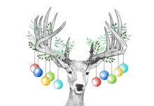 Christmas Deer, Hanging Christmas Ornaments On Antlers, Funny Cute Animal Sketch On White Background, Holiday Card Or Party Invite, Hand Drawn Illustration Of Decorated Leaves On Deer Head And Antlers