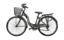 Hand Drawn Road Retro Bike With Basket. Eco Transport Sketch. Vintage Vector Illustration