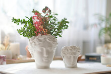 Human Bust With A Potted Plant As A Spikey Hairstyle Of Dried Hydrangea Flowers
