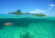 Underwater Paradise , Island , Venezuela