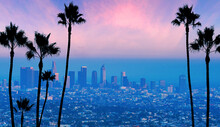 Ready To Use As Banner Or Back Drop Blue Los Angeles California