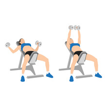 Woman Doing Incline Bench Dumbbell Flyes Exercise. Flat Vector Illustration Isolated On White Background