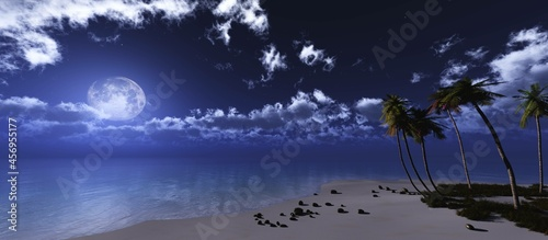 Fotografie, Obraz Beach with palm trees at night under the moon, Seashore at night under the moon,