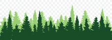 Coniferous Forest Silhouette. Forest Background. Forests Landscape. Flat Vector Illustration