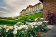 Kwitnące róże w ogrodzie królewskim