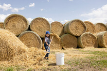 Girl Shoveling Hay Below Rolled Bales On Sunny Farm