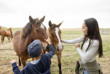 Brother And Sister Petting Horses At Paddock Fence On Rural Farm