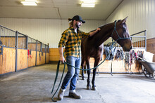Male Veterinarian With Horse In Equine Rehab Barn