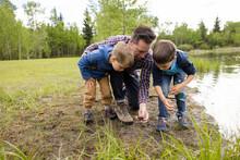 Man Looking At Pond Wildlife With Children