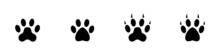 Conjunto De Icono De Huella De Animal. Oso, Perro, Gato, León, Tigre, Zorro. Concepto De Pisadas De Animal. Garra. Ilustración Vectorial