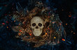 Decorative human skull on dark natural mistery background. magical esoteric ritual. symbol of samhain sabbat. Mysticism, divination, wicca, occultism, Witchcraft concept. flat lay