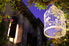 Decorative Bird Cage Hanging From A Tree At Night In The Garden.