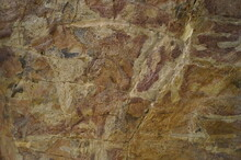 Close-up Of A Museum Piece - Ancient Fossils (fish Skeleton) In Layers Of Limestone