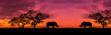 Amazing Safari.Panorama Silhouette Tree In Africa With Sunset.Dark Tree On Open Field Dramatic Sunrise.Safari Theme.Giraffes , Lion , Rhino.with Blur Shadow.