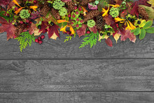 Natural Autumn Thanksgiving Nature Background Border With Leaves, Flowers, Pine Cones, Berry Fruit On Rustic Silver Grey Wood. Harvest Festival Concept. Top View, Flat Lay, Copy Space.