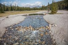 Cascades Pond Banff, Feeder Stream