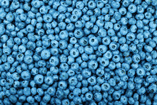 Background Of Fresh Blueberry Berries